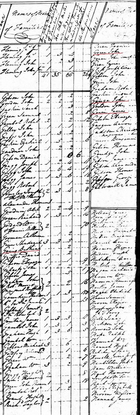 1790-sc-georgetown-co-us-census-bethiah-going-a-john-goinge-a-john-goun-a-james-gawin