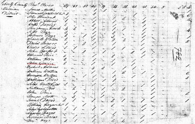 1800-sc-marion-dist-us-census-john-gowin-jr-close-georgetown-26-to-45yrs-snip