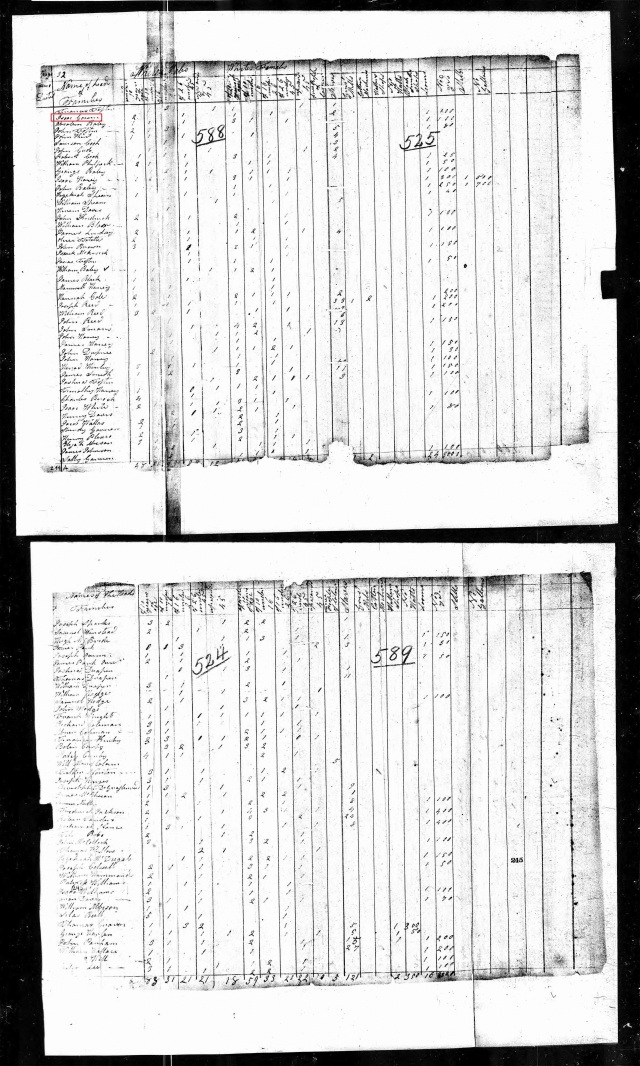 1810 US Census Union SC with Isaac Gowen