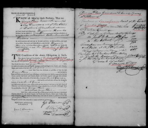 1815 Goen, Sarah in York SC George Plaxco appt guardian of Sarah and then receiving 454 frm Elijah Going est in 1817