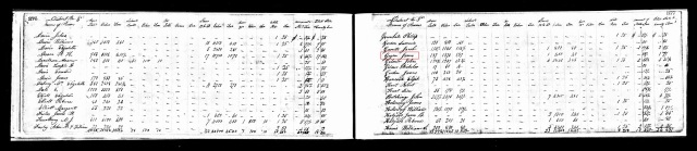 1836 Montgomery Tenn tax list w James Goyne