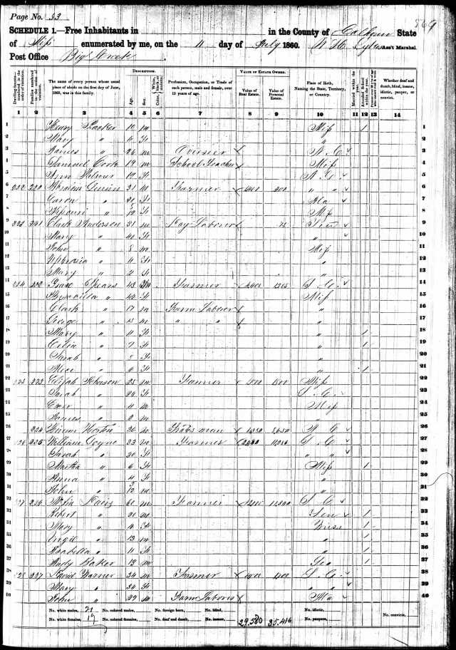 1860 US Census in Calhoun Co, Miss William Goyne w Sarah wife and Martha 6 Anna 4 John 3mo