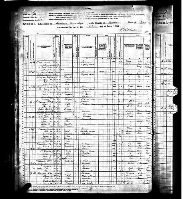 1880 US Census in Prairie Co Ark for John E Going