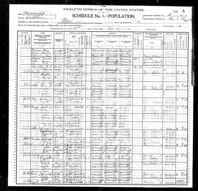 1900 US Census Calhoun County Miss Elvira Aven living with Nancy Provine sheet 11