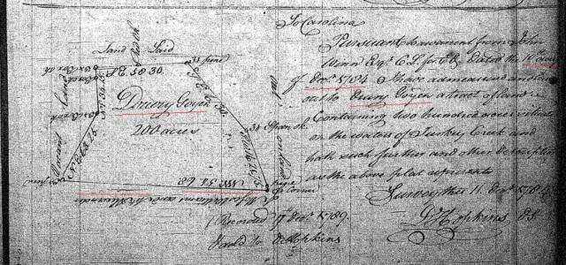 1784 Drury Goyen survey 200a Fairfield SC marked