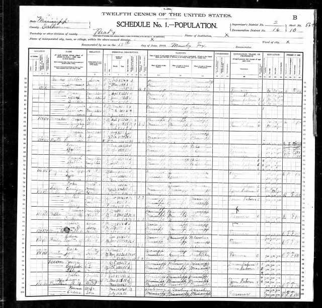 1900 US Census in Calhoun Co Miss w Robt and Nancy Provine