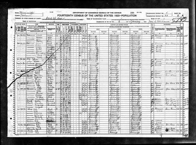 1920 US Census in Calhoun Co Miss w Robt and Nancy Provine