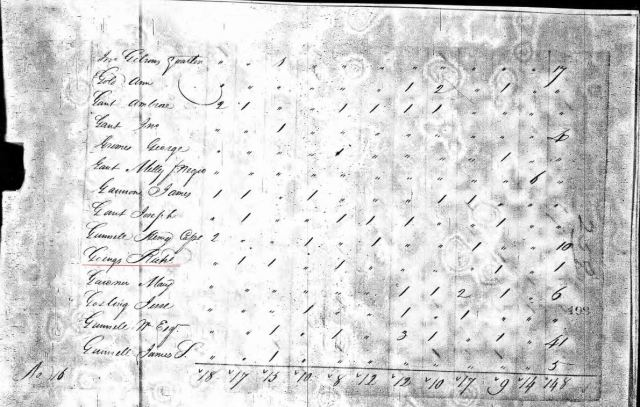 1810-va-fairfax-co-us-census-richard-goings-45-yrs-or-older-marked-snip