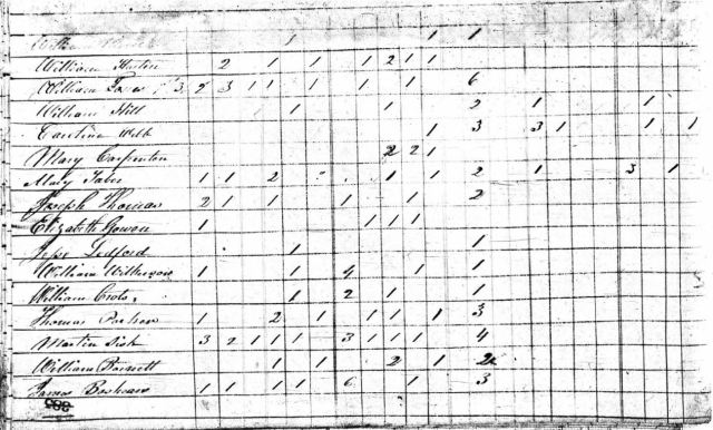 1820 US Census Rutherford Co NC w Eliz Gowen 2nd one snip