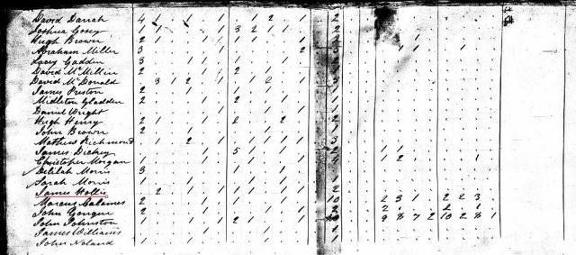 1820 US Census w James Hollis in Fairfield Co SC marked snip