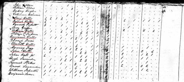 1820 US Census w Mary a Burrell a William a Benjamin a Elizabeth a John Hollis in Fairfield SC marked snip