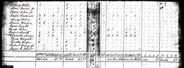 1820 US Census w Nancy Hollis 1 in Fairfield SC